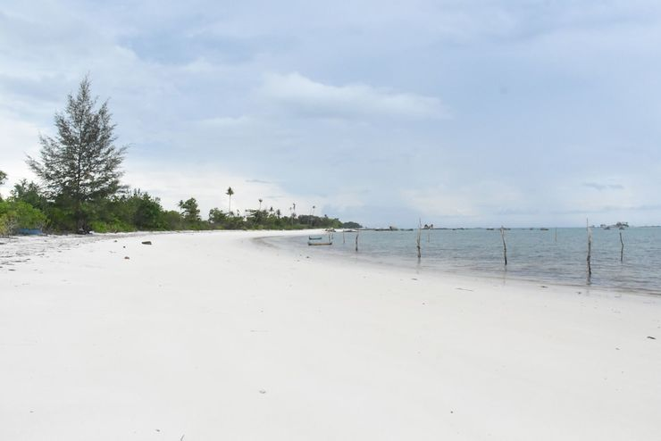 Eco Beach Tent by Billiton Belitung - View from Hotel