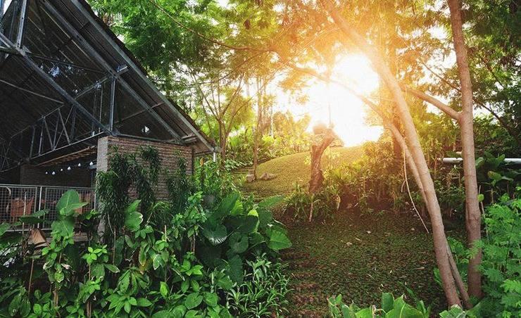 Desa Alamanis Cirebon - Eksterior