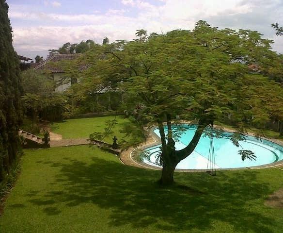 Villa Damos Bandung - Pemandangan kolam renang dari teras kamar