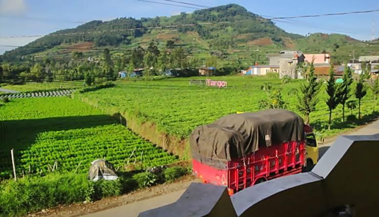 Homestay Kemangi Dieng SYARIAH Banjarnegara - pemandangan dari balkon