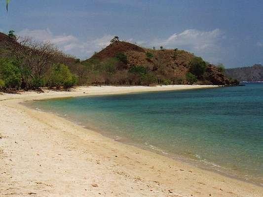 Sylvia Resort Komodo Flores - Pantai