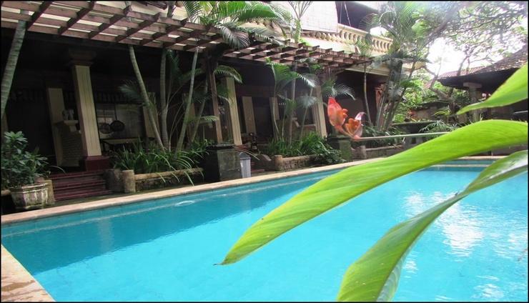 Hotel Griya Ayu Inn Sanur Bali - pool