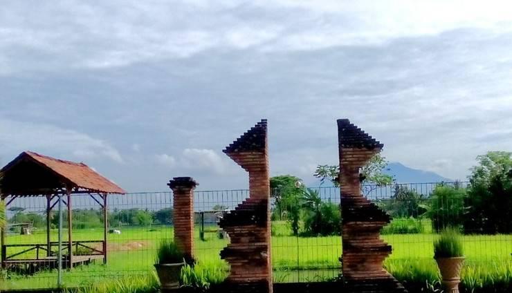 Tembi Rumah Budaya Yogyakarta - pemandangan sawah dan gunung Merapi