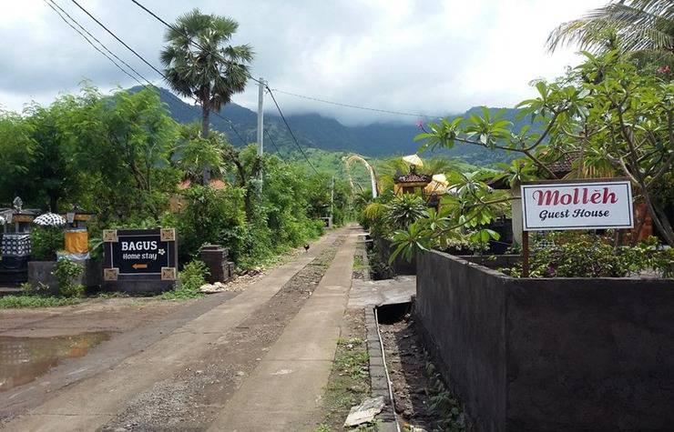 Molleh Guest House Bali - Eksterior