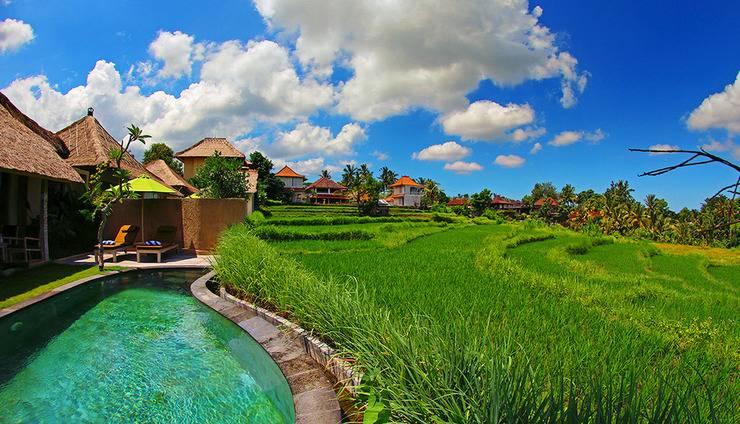 Atta Mesari Villas Bali - Pemandangan