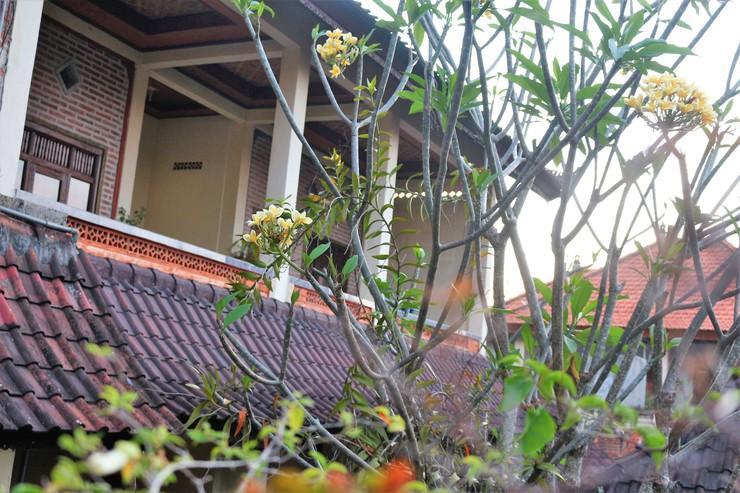 Arjuna Homestay Ubud Bali - Room exterior