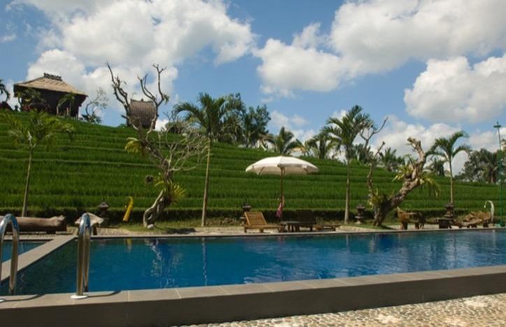 Kebun Villa Bali - Kolam Renang
