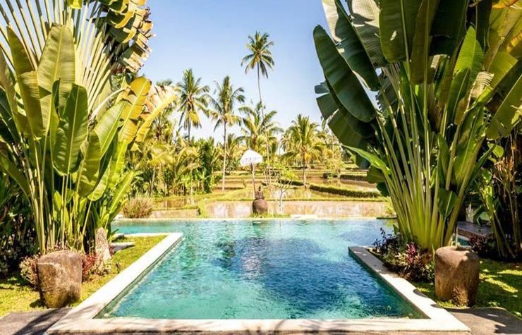Hati Padi Cottages Bali - Kolam Renang