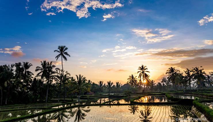 Hati Padi Cottages Bali - Surrounding