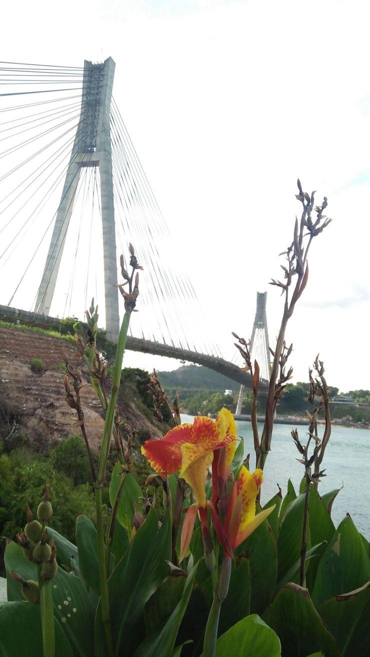 Barelang Bridge Hotel Batam - Surroundings