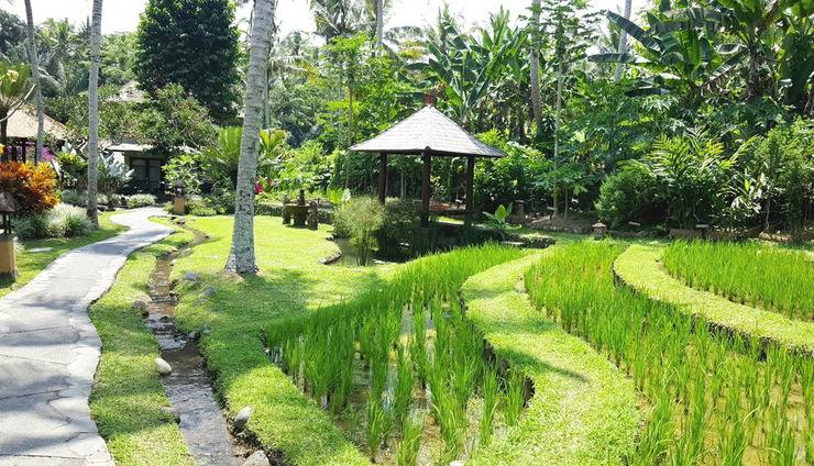 Villa Semana Resort & Spa Bali - Garden Yard