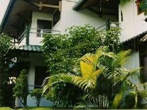 Hotel Pison Toraja Utara -