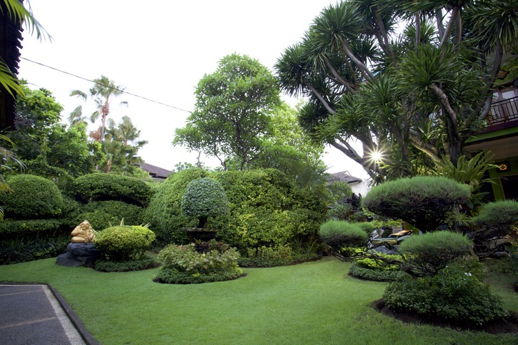 Budha's Guesthouse Bali - Garden