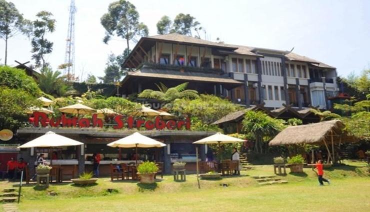 Rumah Stroberi Organic Farm and Lodge Bandung - exterior