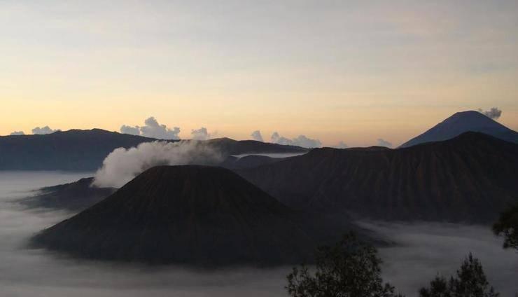 Yog Homestay Probolinggo - Lingkungan Sekitar
