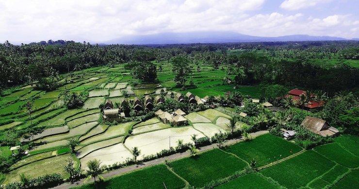 De Klumpu Bali ? Eco Tradi Stay Bali - Featured Image
