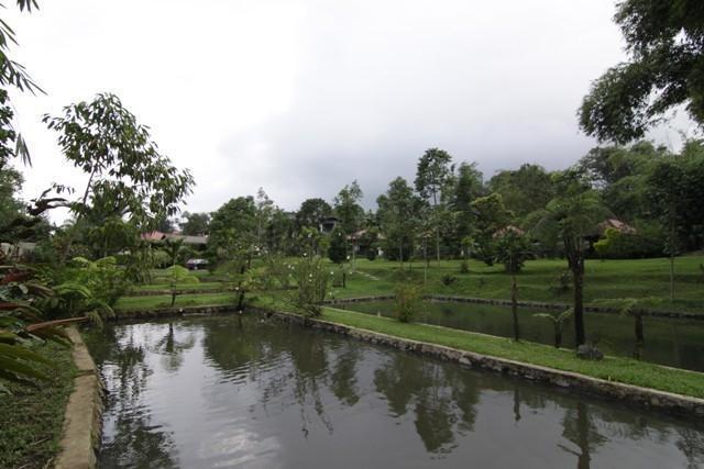 Happy Flower Resort Tomohon - Sekeliling Resort