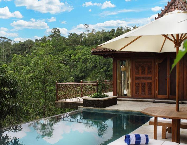 Ayung Resort Ubud - view