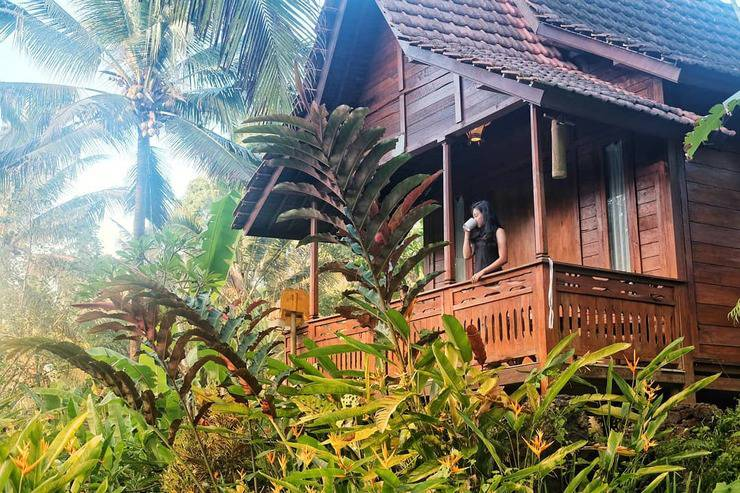 Song Broek Jungle Resort Bali - view