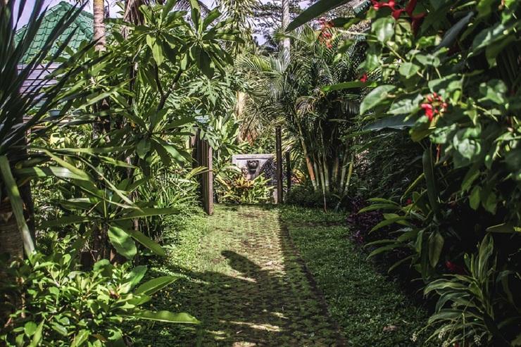 Kubu Jamu Ubud Bali - Garden