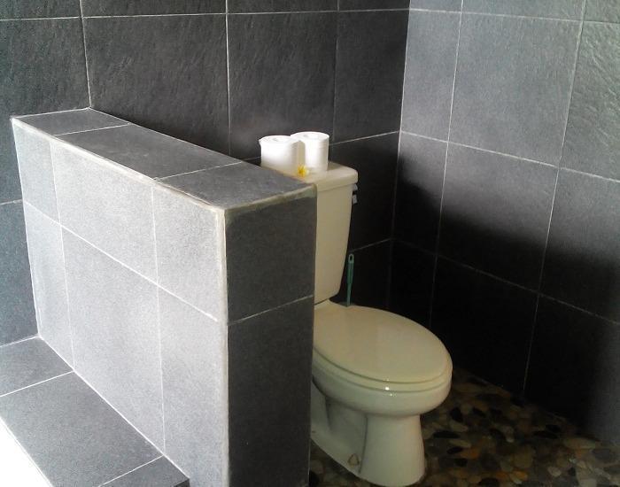 Villa Bintang Ubud Bali - bathroom