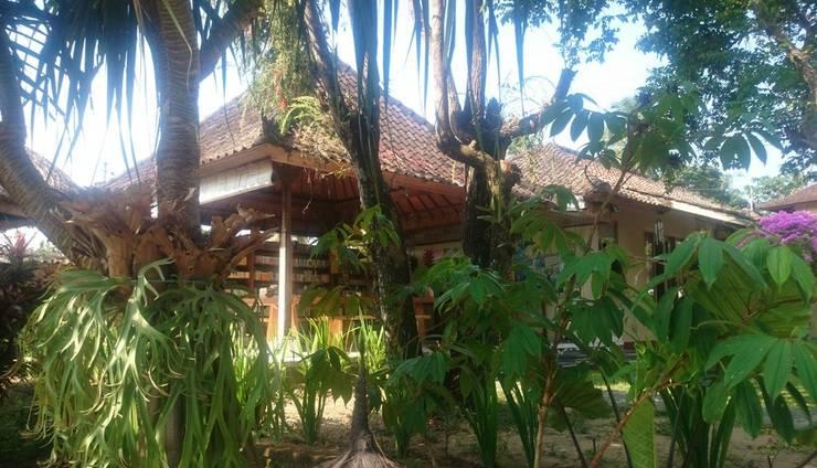 Villa Bintang Ubud Bali - around hotel