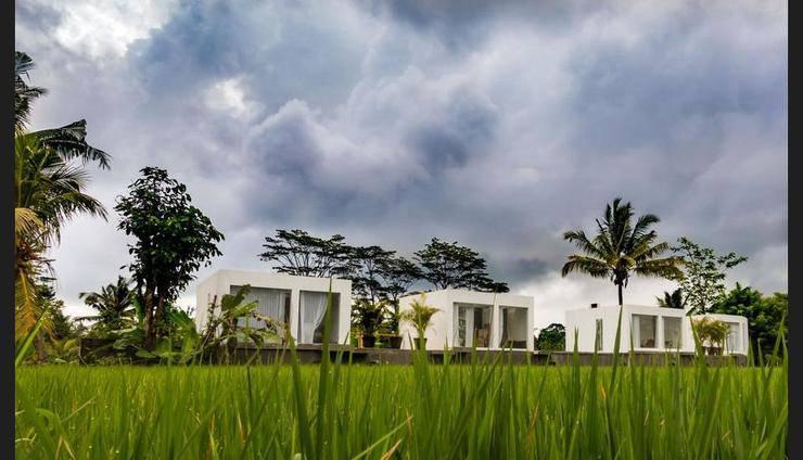 White Cubes Villa Ubud - Featured Image