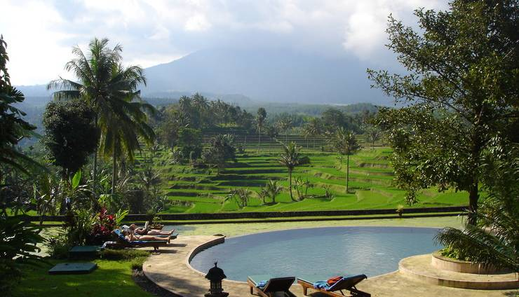 Ijen Resort & Villas Banyuwangi - Pool