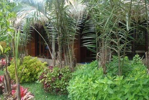 Bali Eco Resort Bali - Taman