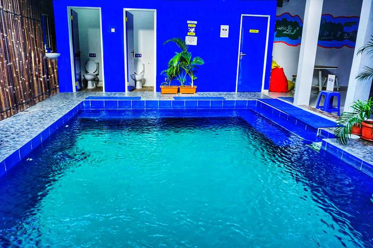Oase Hostel Yogyakarta Yogyakarta - Swimming Pool