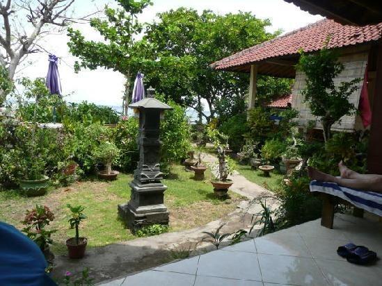 Blue Star Cafe And Homestay Bali - Eksterior