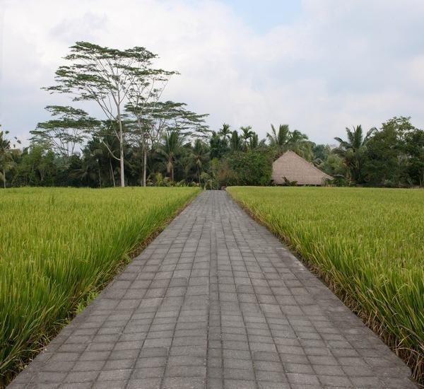 Harga Hotel Villa Samaki (Bali)