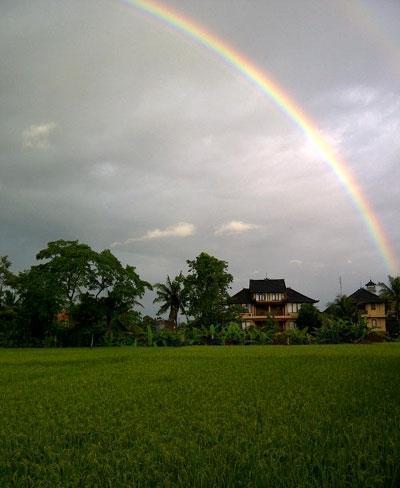 Kunang Kunang Guest House Bali - (06/Feb/2014)