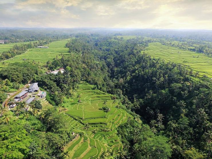 Suarapura Resort & Spa Bali - Featured Image