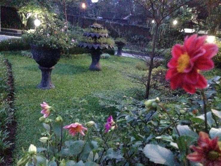 The Garden Family Guest House Bogor - Garden