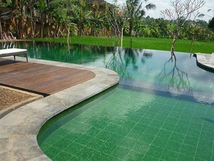 Bliss Bungalow Bali - Pool