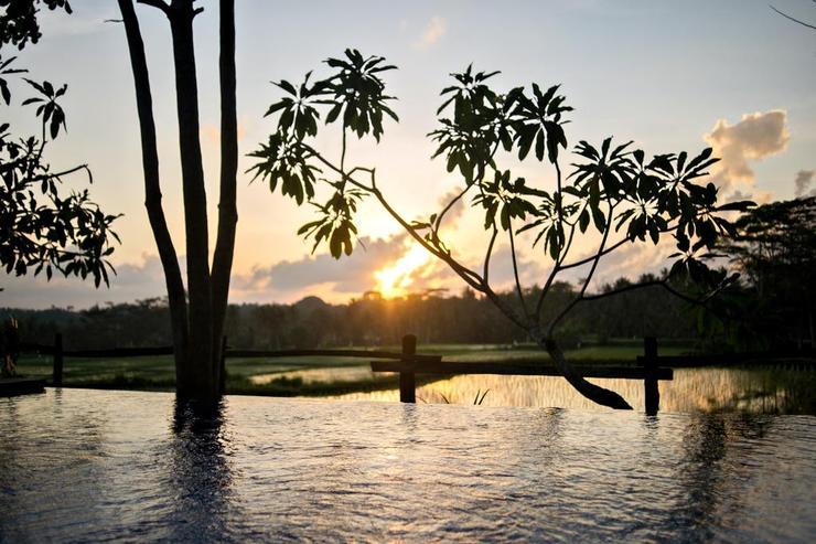 Omah Apik Bali - Pool