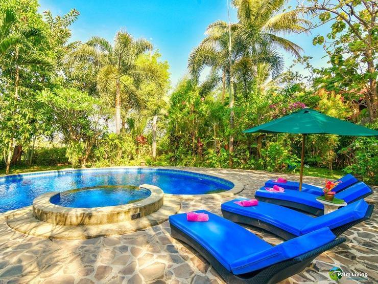 Villa Padma Lovina Bali - Pool