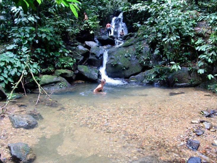 Alamat Indra Valley Inn Bukit Lawang - Medan