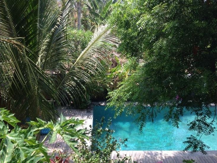Alamat Review Hotel Arjuna Homestay - Bali