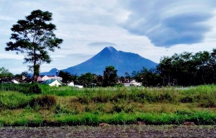 Nitada Premier Prambanan Yogyakarta - Garden & Mountain View