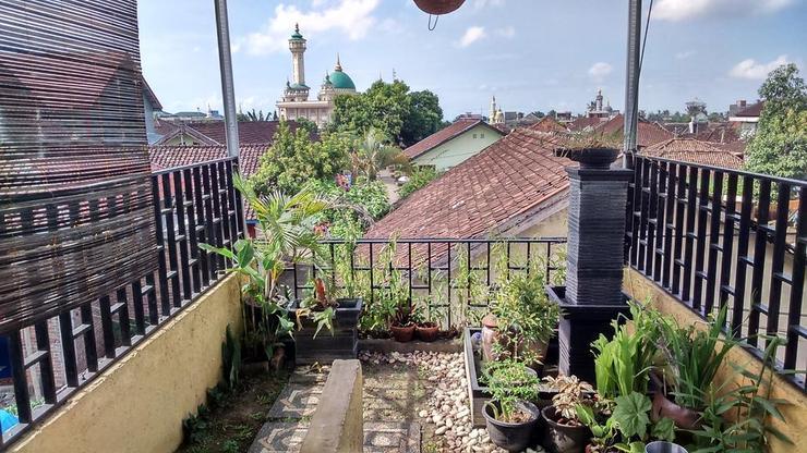 Green House Lombok Lombok - View