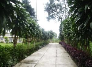 Puri Anandita Bogor - Taman