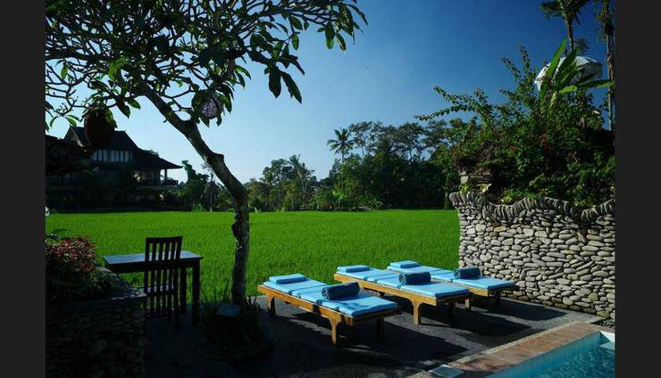 Sri Bungalows Ubud - Outdoor Pool