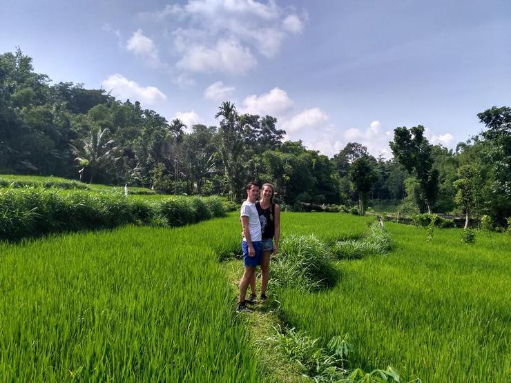 Al Sasaki Homestay Lombok - view