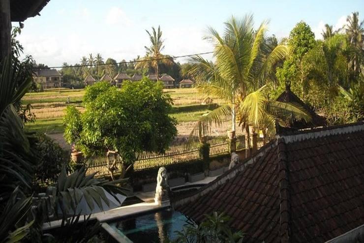 Puri Padi Ubud - Pemandangan