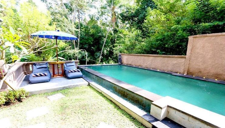 Ubud Harmony Luxury Private Villa  Bali - pool