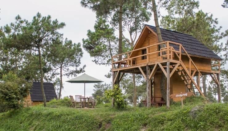 Papandayan Camping Ground Garut - View