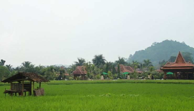 Balemong Resort Semarang - harvest