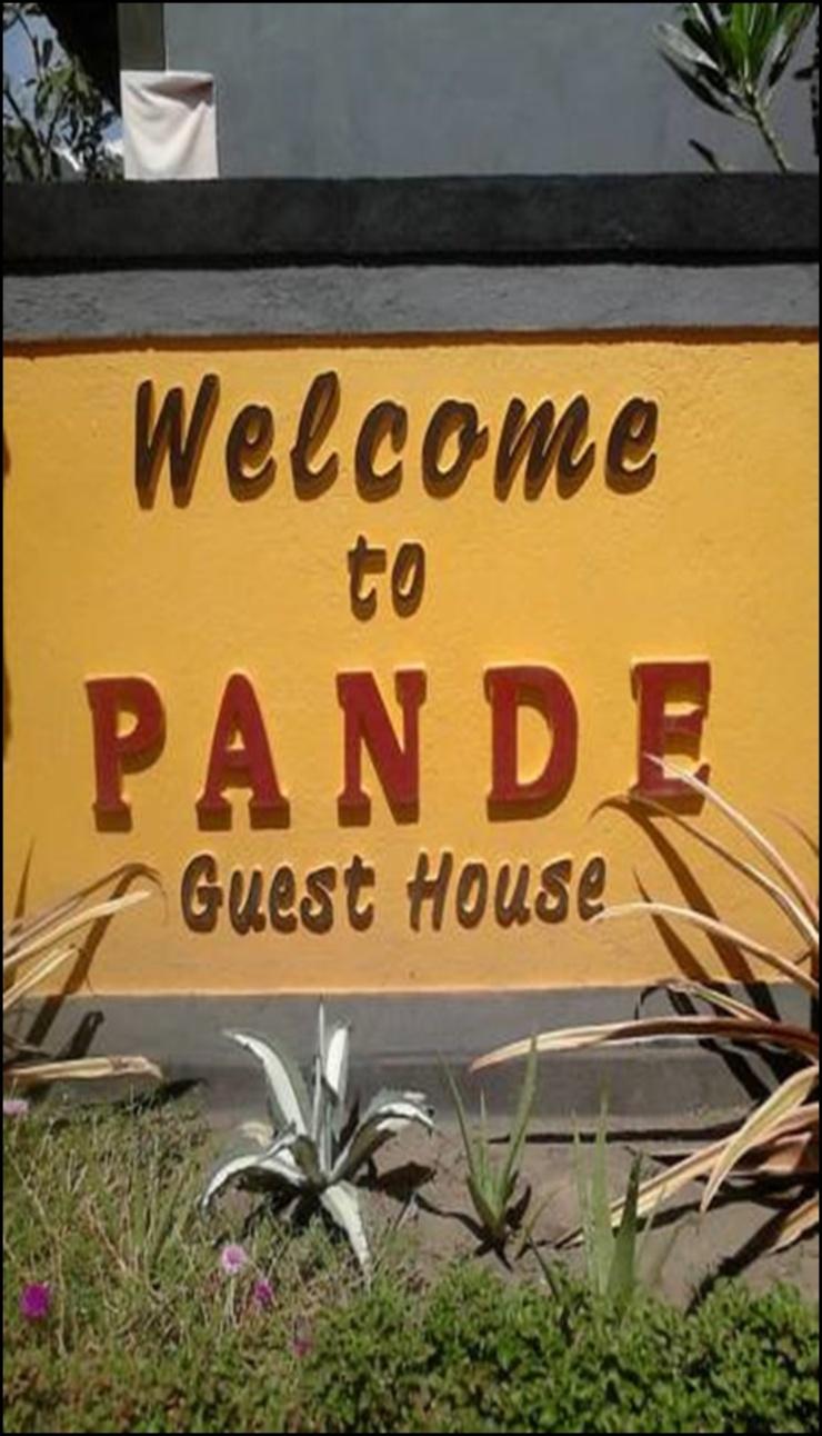 Pande Guest House Bali - exterior